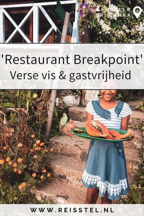 Reisstel.nl | 11 redenen waarom je Tangalle niet mag missen