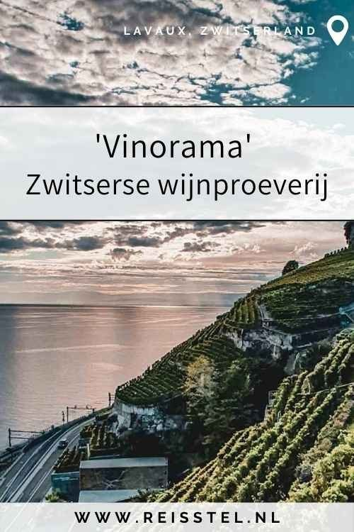 Reisstel.nl 'vinorama' Zwitserse wijnproeverij Lavaux, Zwitserland