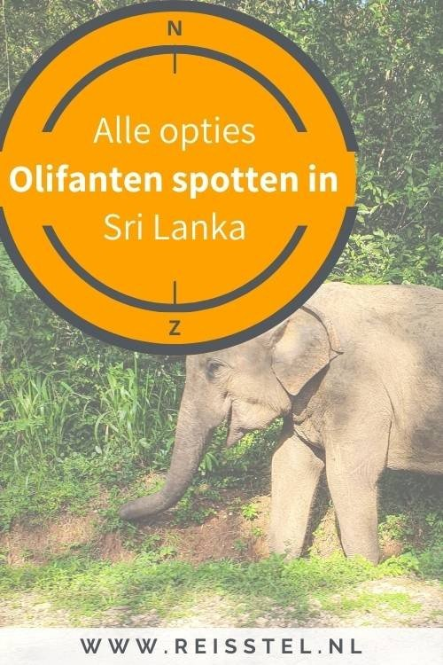 Olifanten in Sri Lanka - olifanten safari - national parks in Sri Lanka