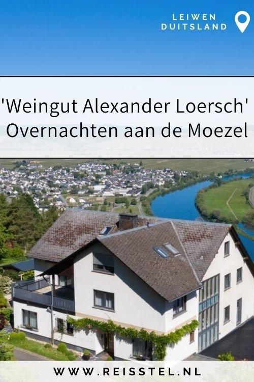 Moezel, must sleep | Alexander Loersch